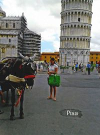 italia_pisa
